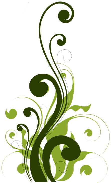 465 4650645 filigree png background design for publisher clipart2